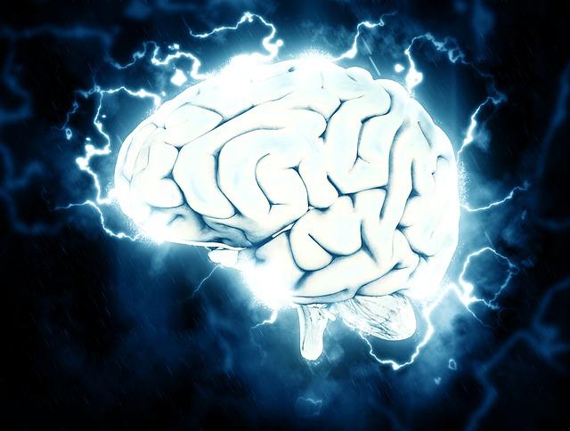 脳はブドウ糖がエネルギー