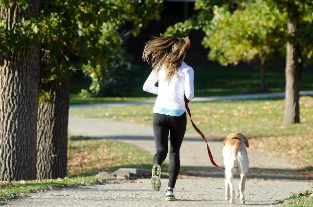 散歩でストレス解消