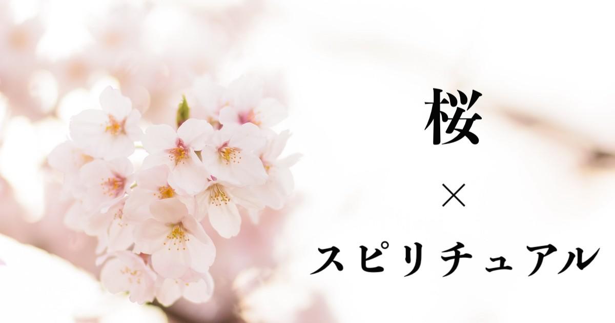 桜のスピリチュアルな意味