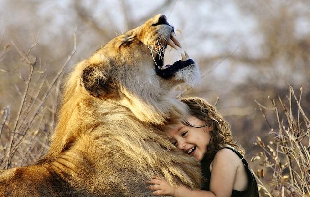 動物と会話できるエンパスの人