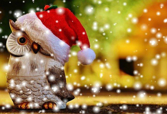 クリスマスに福を呼ぶフクロウ